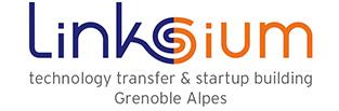 logo linksium
