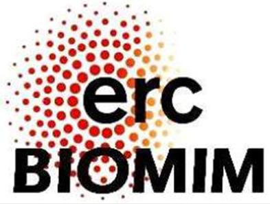 Logo ERC.jpg