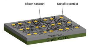 silicon Nano.JPG